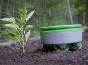 Tertill – «садовый гном», который сделает за Вас самую грязную работу