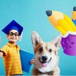 ТОП 5 интерактивных гаджетов для школьников 2017