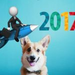 Какой бизнес выгодно начать в 2017 году?