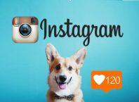 Принципы ведения бизнеса в Instagram