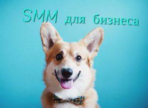 Значение SMM для малого бизнеса 2017
