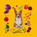 Гаджеты для кухни и кулинарии 2017