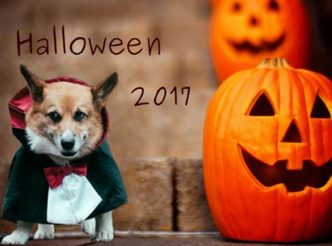 Лайфхаки для дома: идеи декора на Хэллоуин 2017