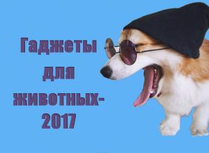 гаджеты для животных 2017