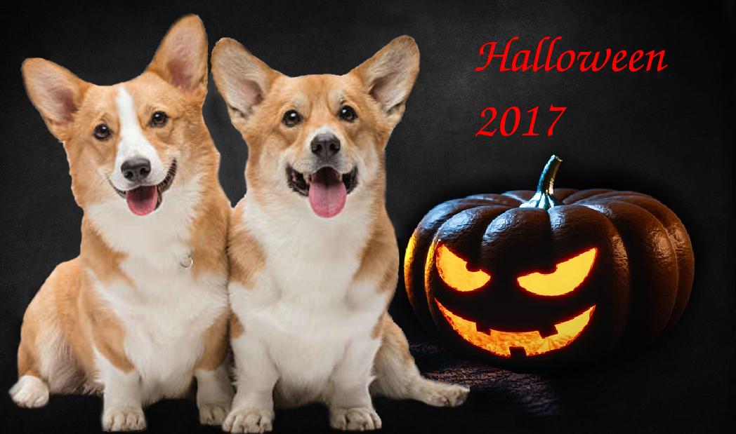 ТОП 5 идей для парочек на Хэллоуин 2017