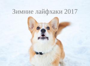 Полезные зимние лайфхаки 2017
