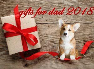 Гаджеты для мужчин: что подарить папе на Новый год 2018