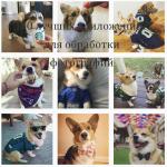Лучшие приложения для обработки фотографий в Инстаграм