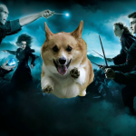 Harry Potter: Wizards Unite новая игра от создателей Pokemon GO