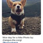 Хэштеги для Pinterest