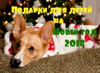 крутые новогодние подарки для мальчиков 7 лет