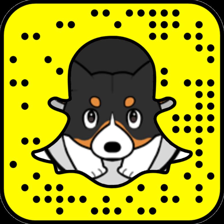 Snapchat для бизнеса