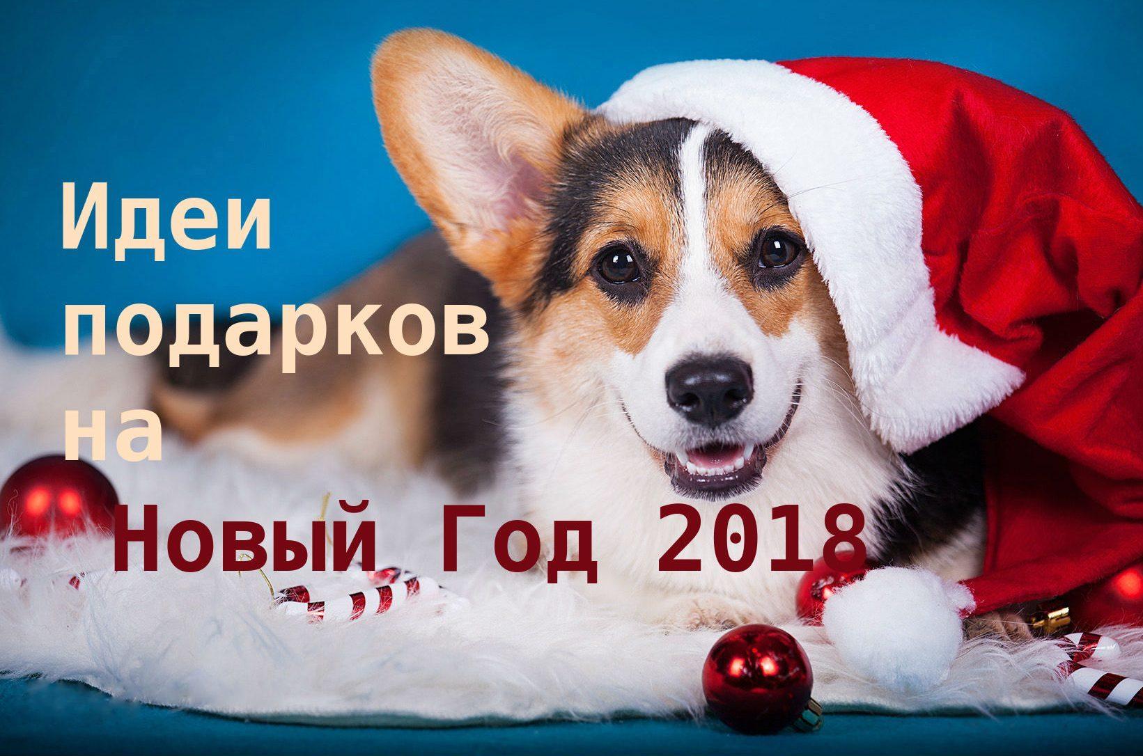 интересные идеи для подарков на Новый год 2018
