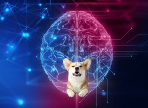 Neurable технология управления силой мысли для VR игр
