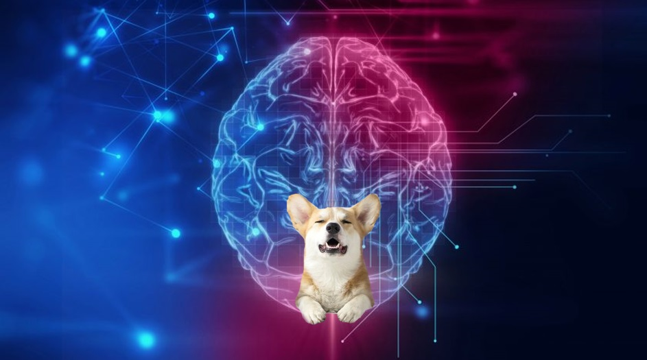 Neurable - технология управления силой мысли для VR игр
