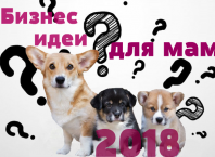 Бизнес идеи для мам в декрете 2018