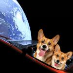 Илон Маск запустил Tesla в космос