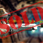 Продано! Огнеметы The Boring Company закончились спустя 4 дня после старта продаж