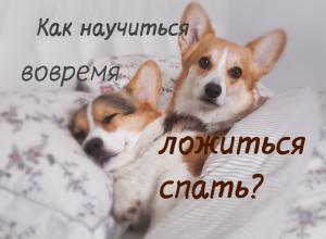 как научиться вовремя ложиться спать