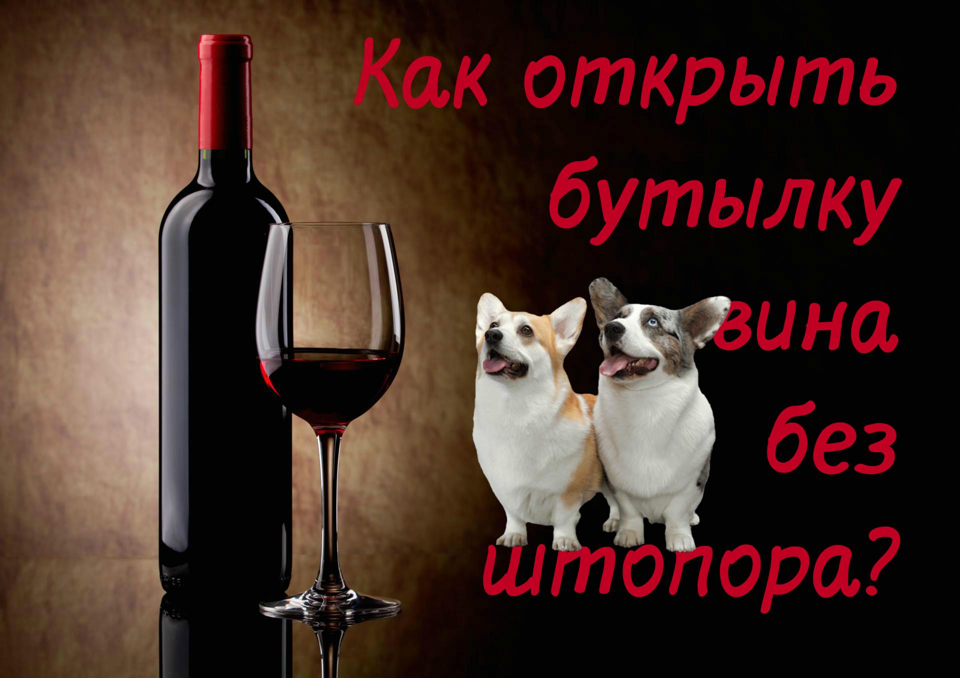 способы открыть бутылку вина без штопора