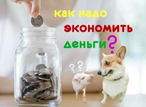 как надо экономить деньги