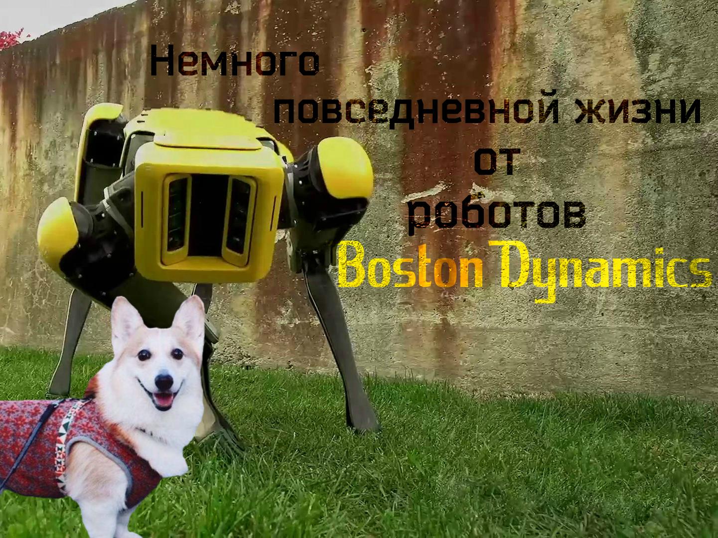 Немного повседневной жизни от роботов Boston Dynamics: гуляем со SpotMini и бегаем с Atlas
