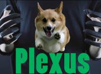 VR-перчатки Plexus