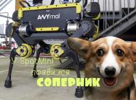 Робот ANYmal — швейцарский соперник SpotMini