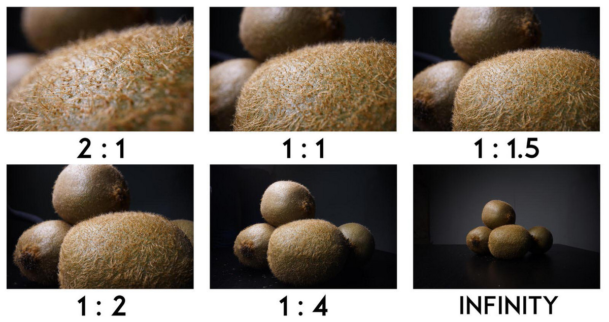 Laowa 24mm f/14 2X Macro Probe Lens