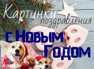 новогодние поздравления на новый год