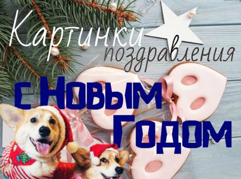 Картинки поздравления с Новым Годом 2019