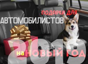 подарки для автомобилистов на новый год