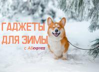 гаджеты для зимы