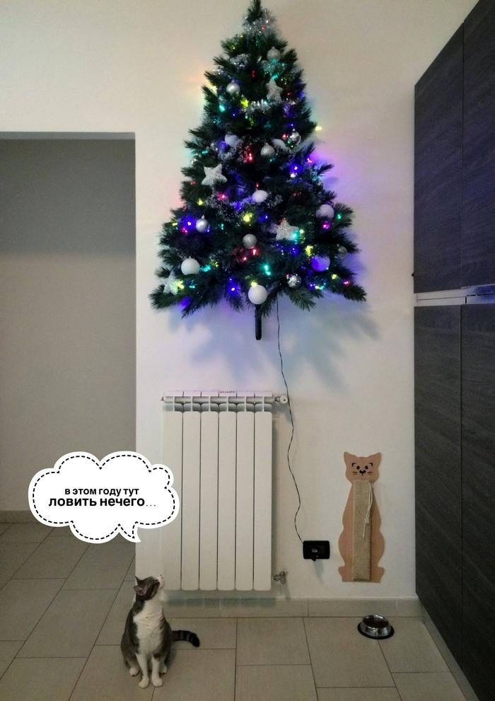 Елка на стене от кота