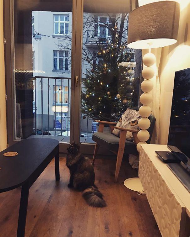 как поставить елку если в доме кот