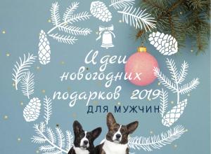 идеи новогодних подарков 2019 для мужчин