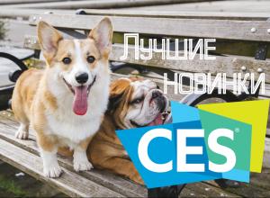 Итоги CES 2019: лучшие технологические новинки