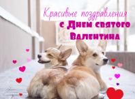 Красивые поздравления с Днем святого Валентина
