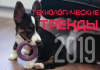 Технологические тренды 2019