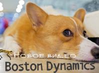 Новое видео Boston Dynamics 2019: робот Handle