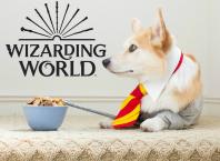 Harry Potter: Wizards Unite - амбициозная AR-игра для Android и iOS