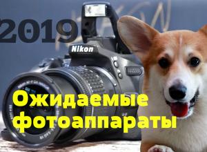самые ожидаемые фотоаппараты 2019