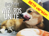 Скачать игру Harry Potter: Wizards Unite