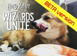 Скачать игру Harry Potter: Wizards Unite