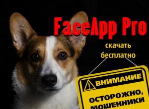"""""""FaceApp Pro скачать бесплатно"""" — новый способ мошенничества"""