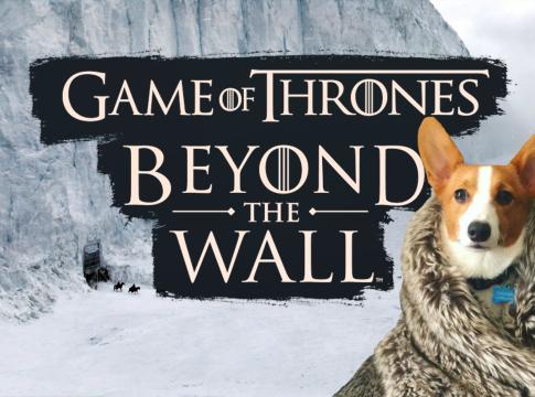 Game of Thrones: Beyond the Wall - новая игра по мотивам Игры престолов