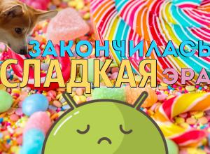 Google озвучил название Android Q - закончилась сладкая эра Андроидов