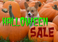 Хэллоуинские скидки на гаджеты 2019
