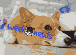 новости недели