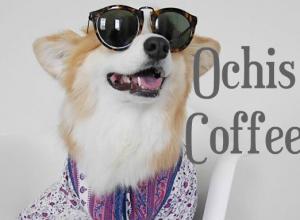 очки Ochis Coffee